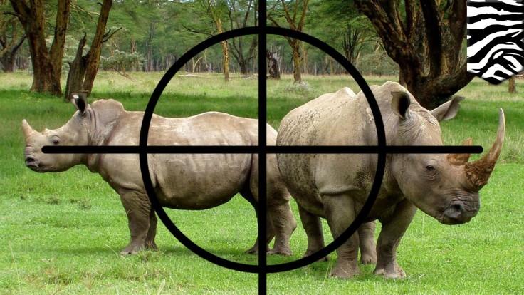 caza ilegal.jpg