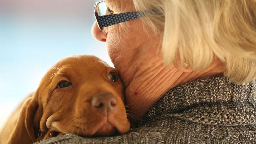 mujer abrazando perro, beneficios de las mascotas