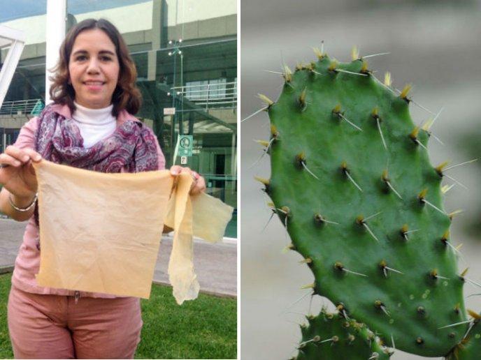 Esta investigadora mexicana creó plástico biodegradable a partir de jugo de nopal. ¡Conoce su historia!